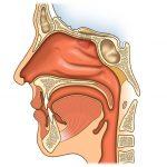 Опухоли носа и придаточных пазух