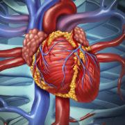 Какие симптомы говорят о проблемах с сердцем? Кардиолог НМИЦ рассказала о профилактике сердечно-сосудистых заболеваний