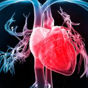 Противоопухолевая терапия: как защитить сердечно-сосудистую систему