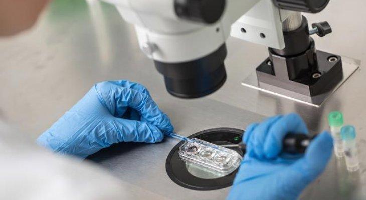 ЭКО и рак яичников