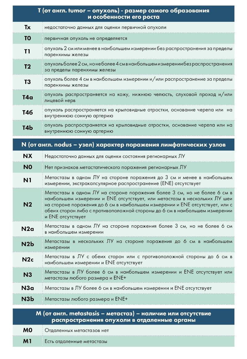 Международная классификация TNM